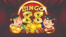 Bingo-88