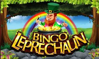 Bingo-Leprechaun-500x300px (1)